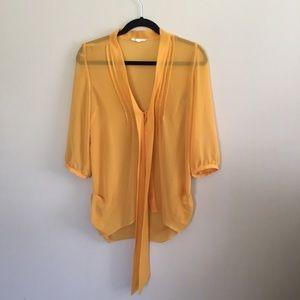 Alythea Mustard Colored Long Sleeve Sheer Shirt
